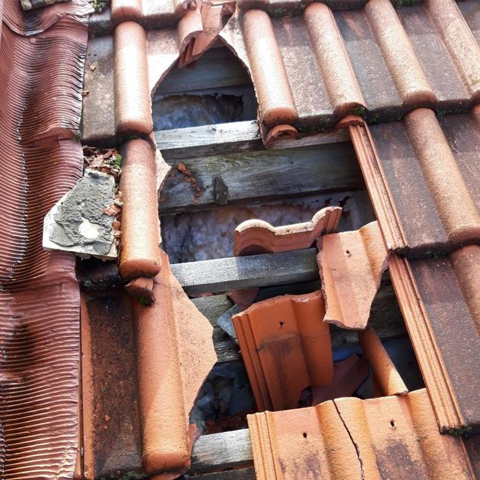 Разрушение кровельного покрытия, поражение грибком деревянных конструкций